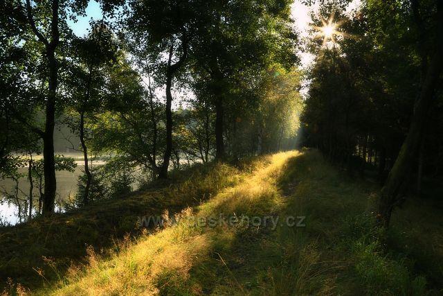 U Starého rybníka
