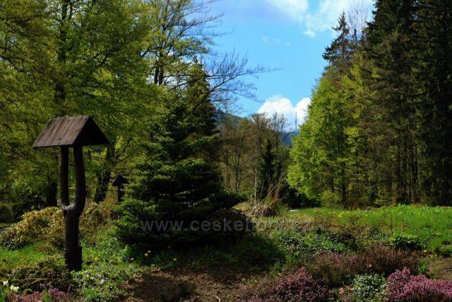 Pohledem z Karlovy Studánky až na Praděd - Jeseníky