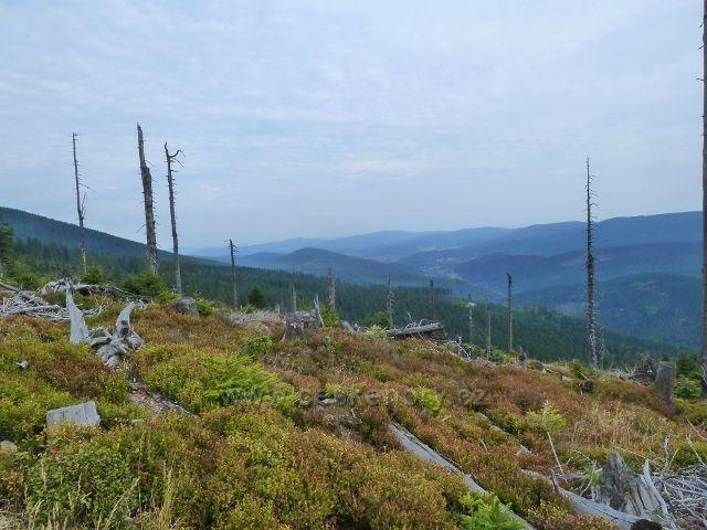 Králický Sněžník - pohled do údolí říčky Kamenice z úbočí Stříbrnické