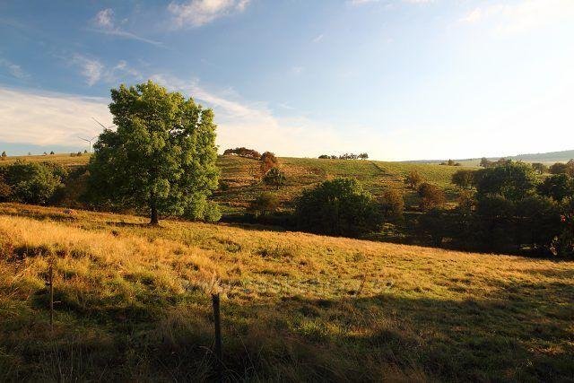 Pastviny u bývalých Habartic