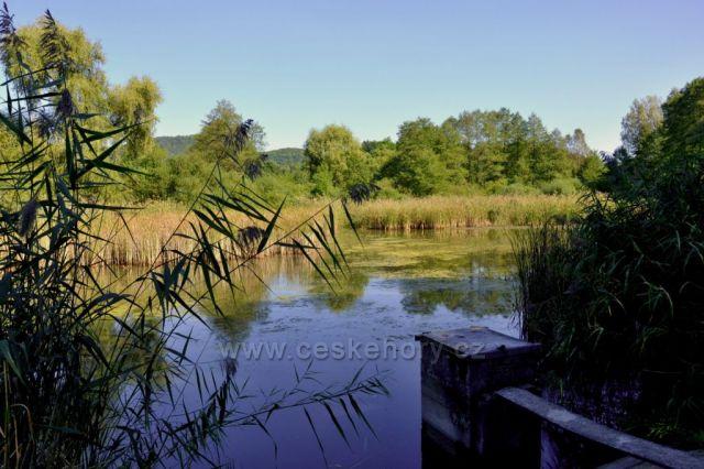 Kachní rybník
