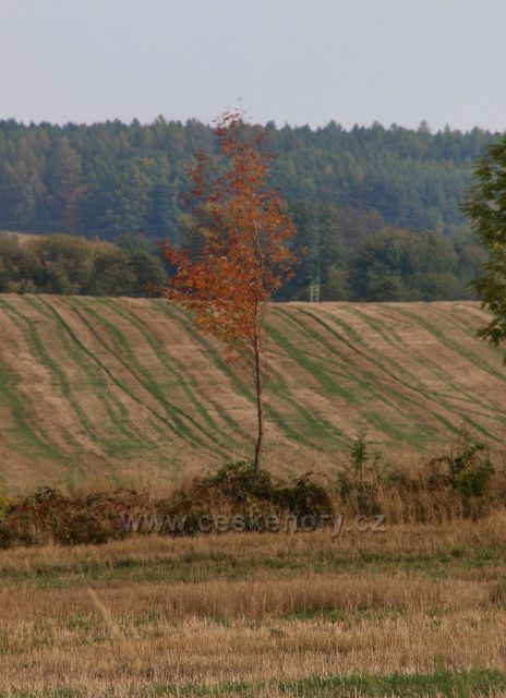 Začátek podzimu u Havlovic a na rybníku Petráň