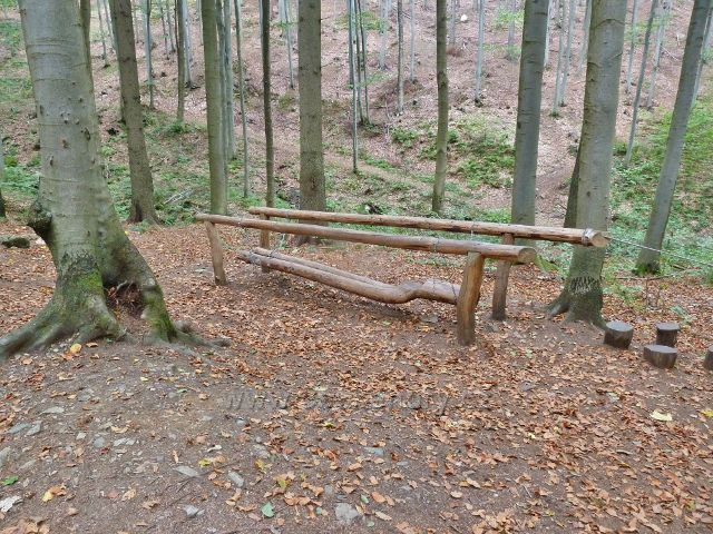 """Horní Lipová - """"houpací most"""" u silničky k lesnímu baru"""
