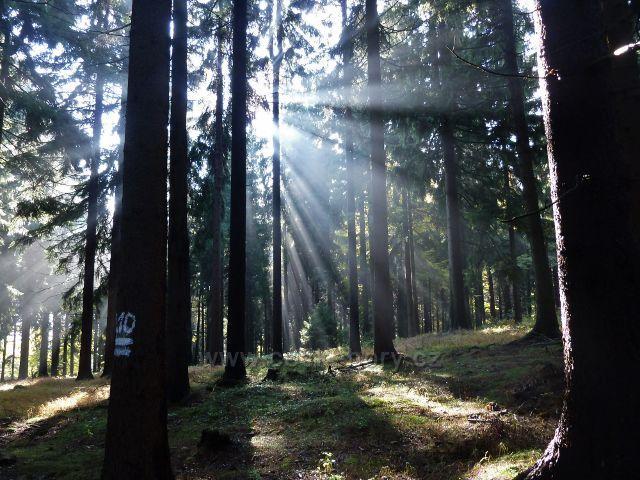 Lichkov - podzimní slunce před rozcestím Odranec