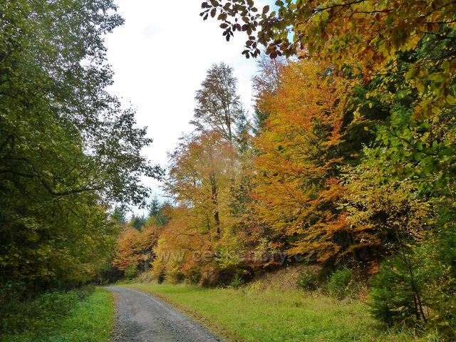Těchonín - podzimní cesta Uhelným dolem