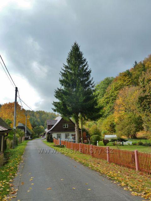 Těchonín - barvy podzimu v horní části obce