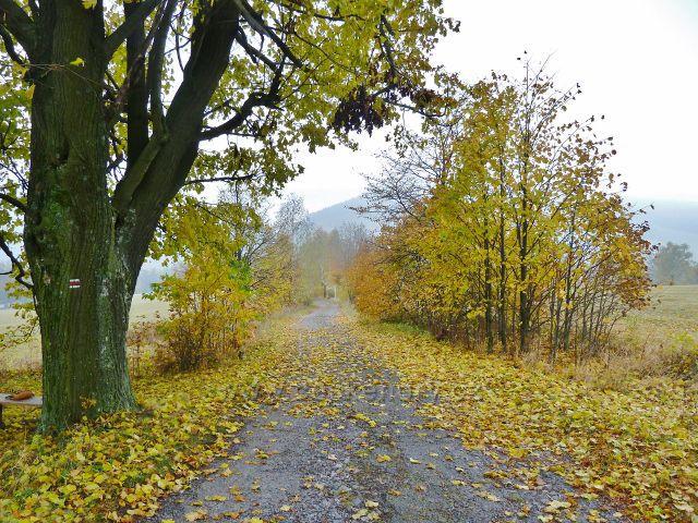 Vlčkovice - podzimní cesta po červené TZ na Kostelní vrch