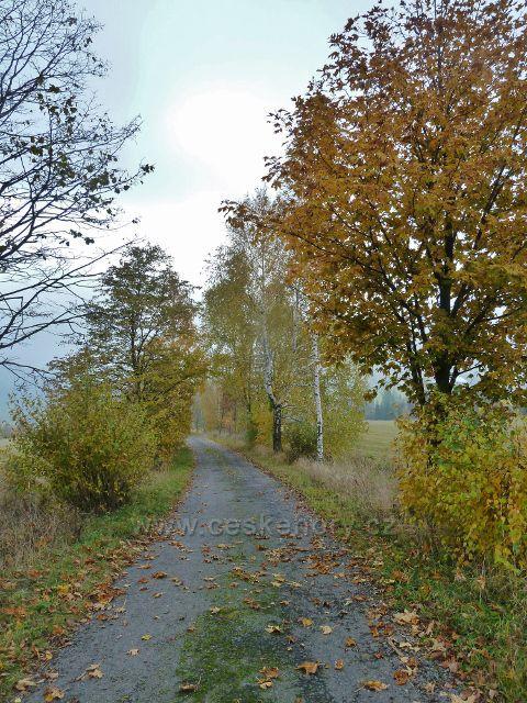 Vlčkovice - cesta po červené TZ na Kostelní vrch v barvách podzimu
