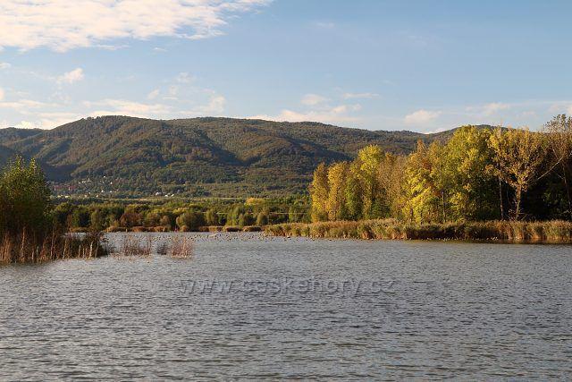Farský rybník