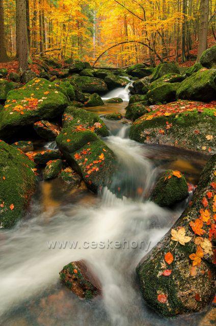 Jedlový důl a jeho krásné podzimní zbarvení.