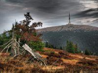 Jeseníky - pohled z Vysoké hole na Praděd