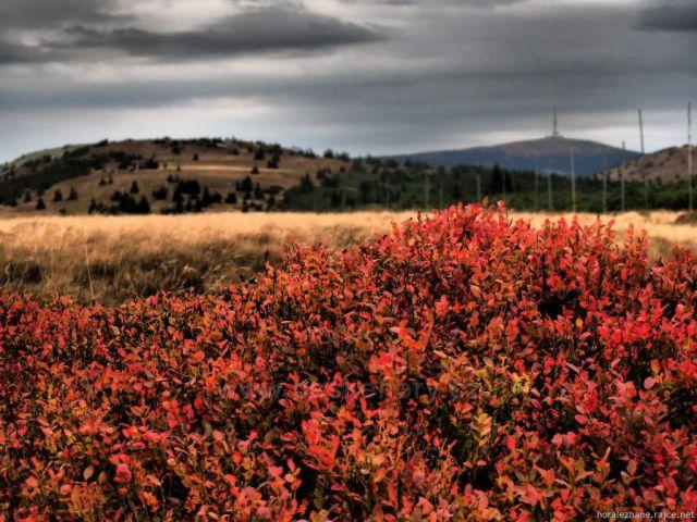Jeseníky - výhled z Pecného na Praděd