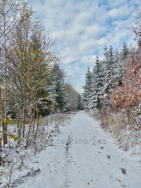 Zimní cesta nad Litickým lomem