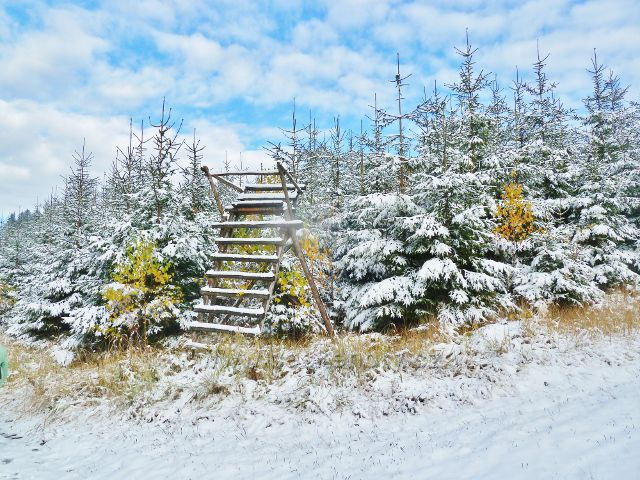 Posed u cesty od vrcholu Chlumu k Žitné