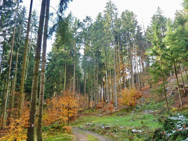 Cesta do Potštejna po červené TZ údolím V Dolích