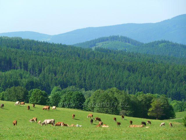 Pastviny na úbočí Valu