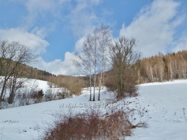 Horní Lipová - pohled z vlaku na úpatí vrchu Kopřivný