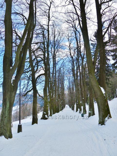 Lázně Jeseník - lesní kolonáda