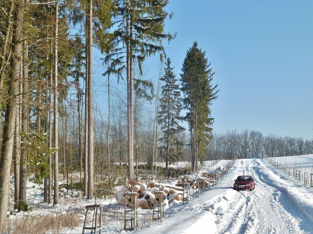 Žamberk- zimní těžba dřeva pod glorietem