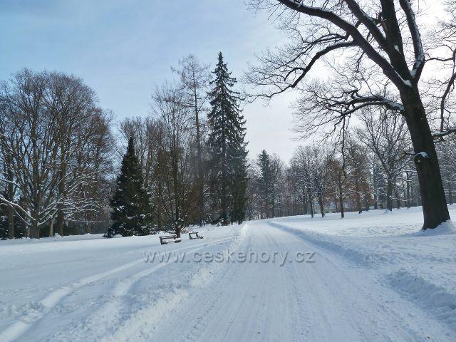 Žamberk - cesta zámeckým parkem k bývalému dvoru