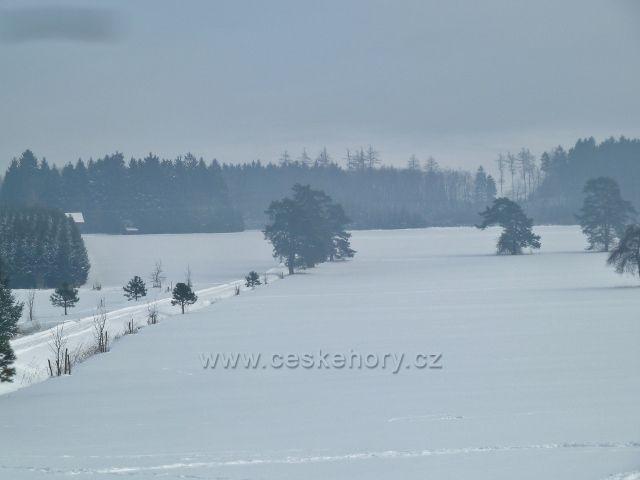 Žamberk - zasněžené louky v zámeckém parku pod hájovnou