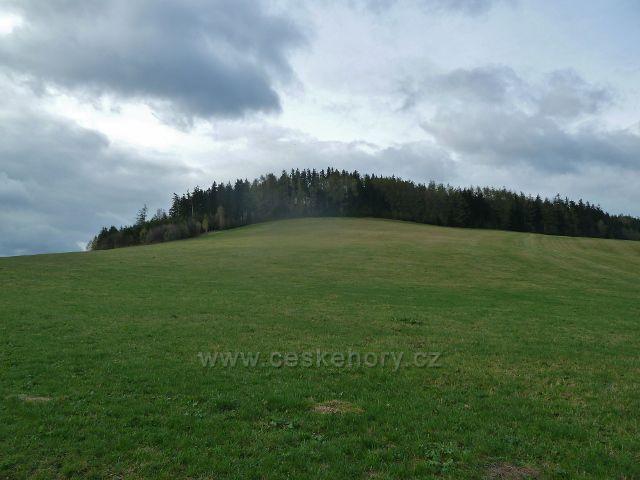 Vlčkovice - pohled na Studenecký vrch (721 m.n.m.)