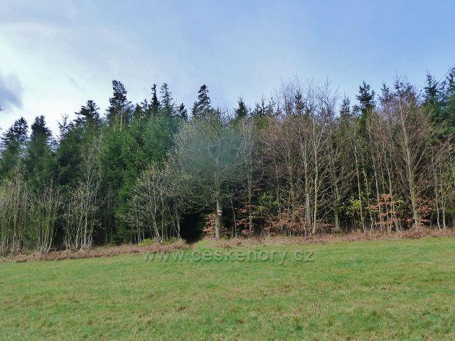 Vlčkovice - červená TZ na okraji Studeneckého lesa