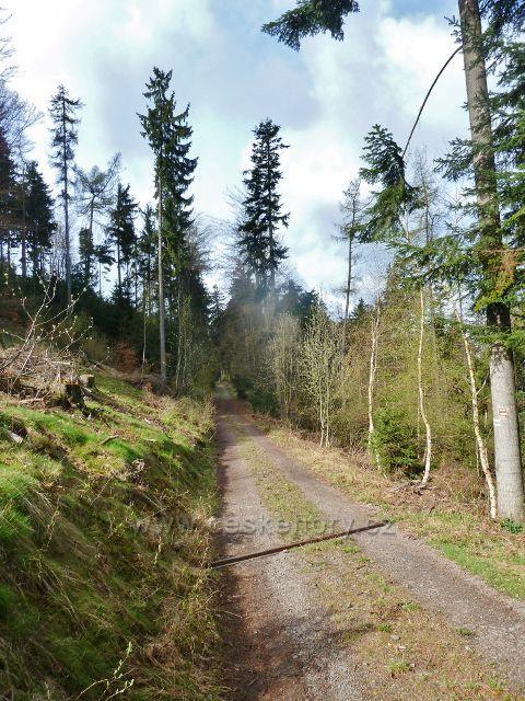 Vlčkovice - vrstevnicová cesta po červené TZ Studeneckým lesem