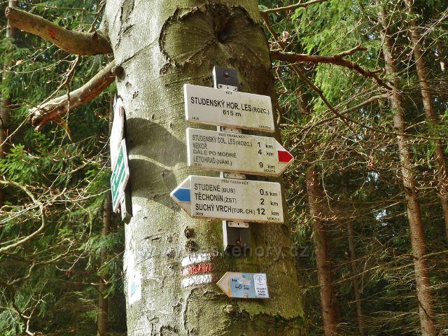 Studenecký horní les - turistický rozcestník