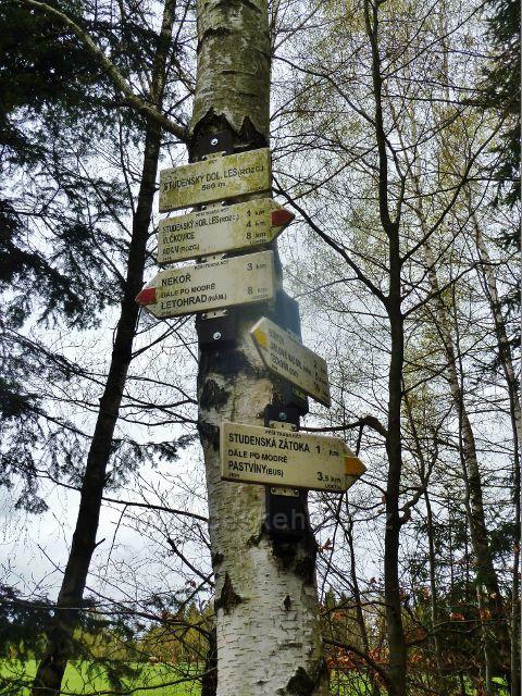 Studenecký dolní les - turistický rozcestník