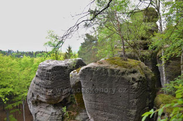 Arboretum Bukovina-vyhlídka