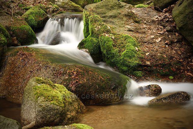 Černický potok