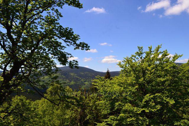 Výhledy ze zámecké hory