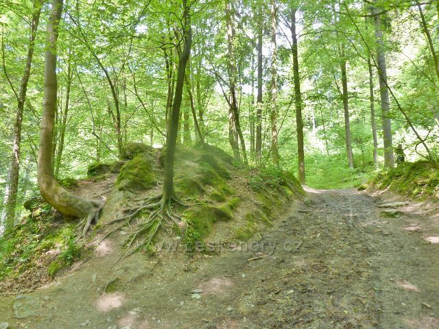Rešov - cesta po červené TZ podél Huntavy k vodopádům
