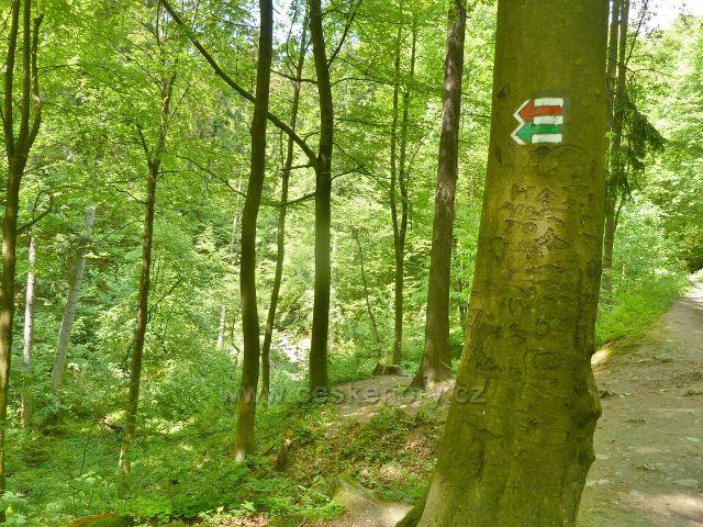 Rešov - cesta nad Huntavou k vodopádům
