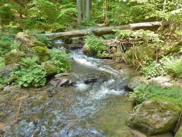 Rešovské vodopády - Huntava v horní části rezervace