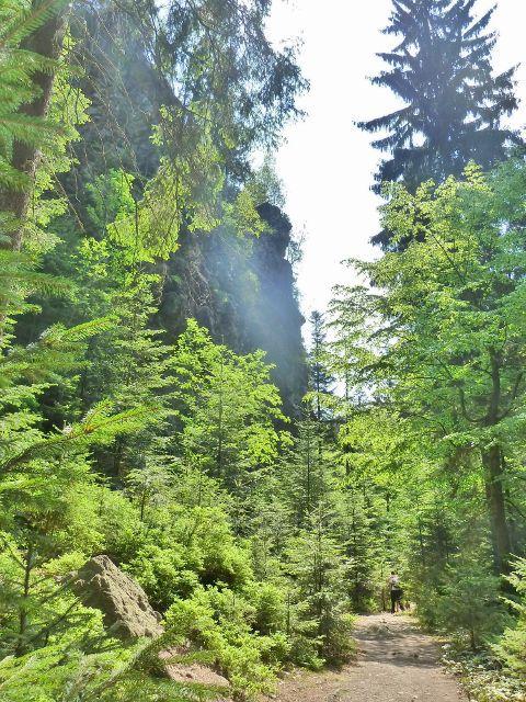 Rešovské vodopády - skaliska nad cestou po zelené TZ do obce Skály