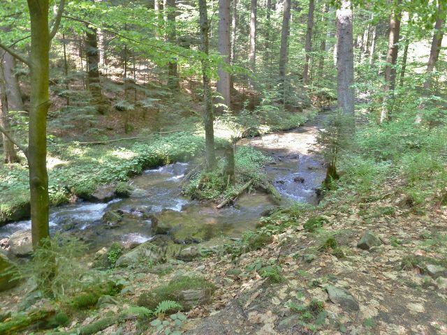 Rešovské vodopády - Huntava nad soutokem s Tvrdkovským potokem