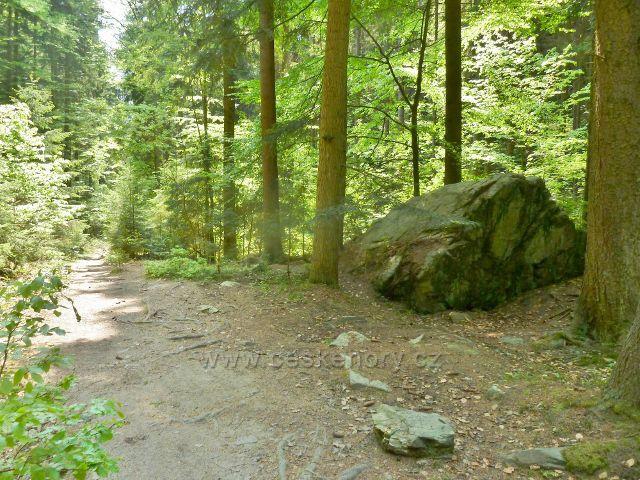 Rešovské vodopády - cesta po zelené TZ do obce Skály  v horní části rezervace