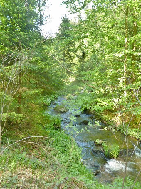 Rešovské vodopády - Huntava nacelých sto metrů pod horní hranicí rezervace