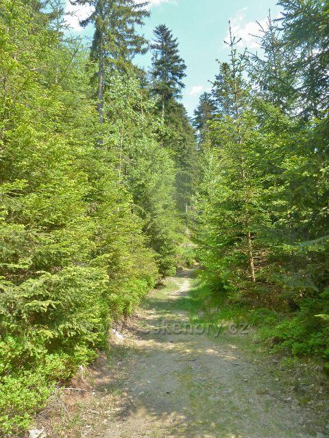 Rešov - neznačená cesta od hranice PR Rešovské vodopády zpět do Rešova