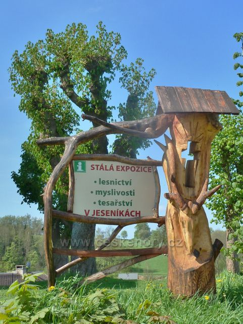 Branná - upoutávka na místní muzeum lesnictví, myslivosti a tesařství