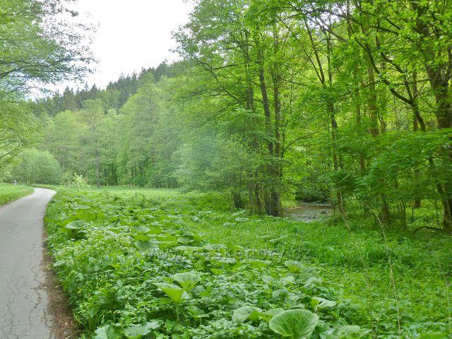 Cyklostezka údolím Moravské Sázavy