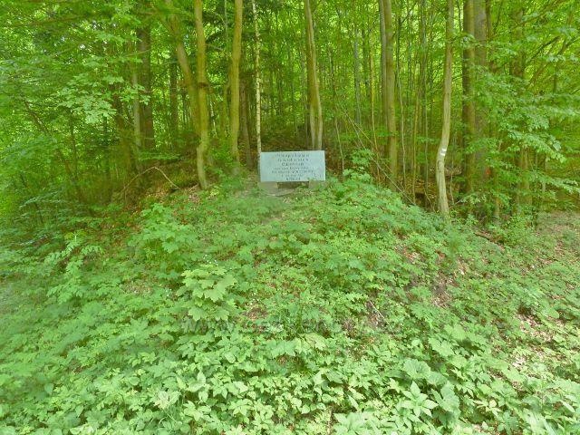 Lichtenštejnský kámen v údolí Moravské Sázavy