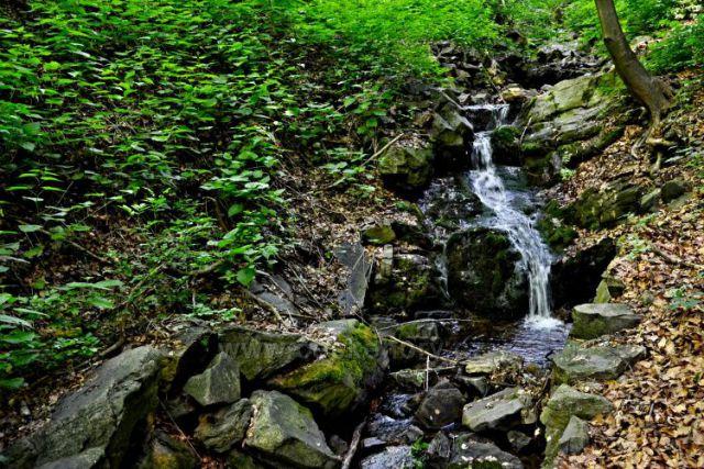 Osecký potok