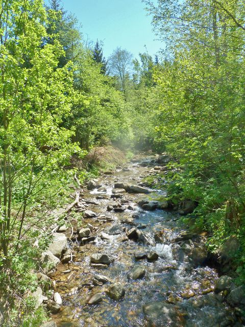 Branná - Klepáčský potok před soutokem s Brannou