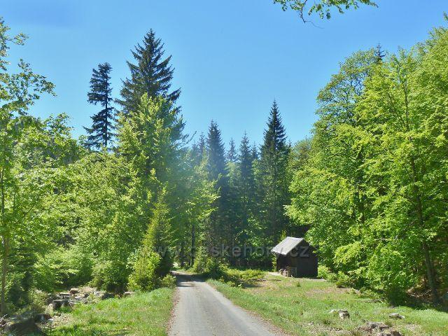Lovecká chata v údolí Klepáčského potoku