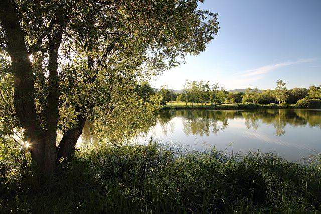 Rybník Dub