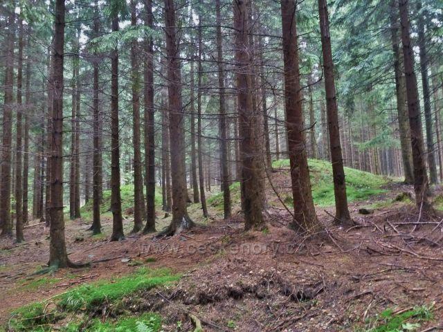 Pozůstatky sejpů na začátku Údolí ztracených štol
