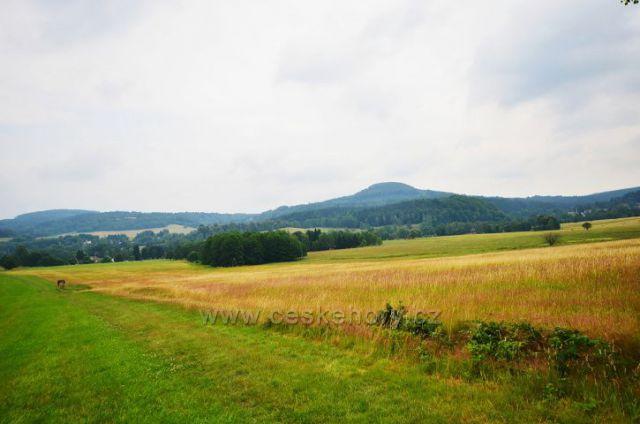 Pastviny kolem Chřibské